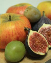 fruits-octobre2.jpg